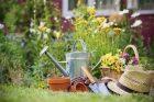 Home Improvement & Gardening